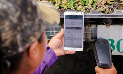 Woman scanning plants with Arbre Nursery