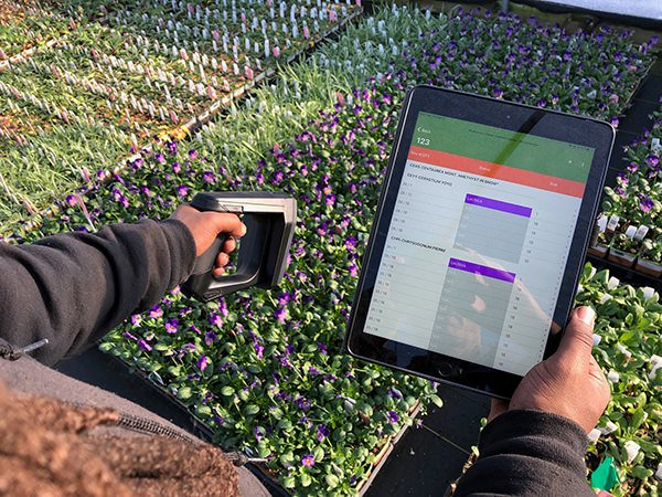scanning plants with tablet
