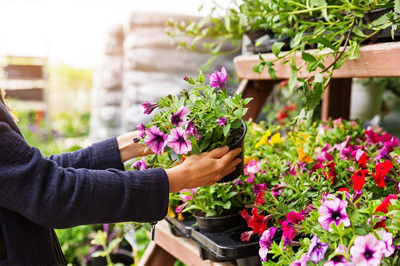 3 Reasons a Horticulture Business Should Consider E-Commerce