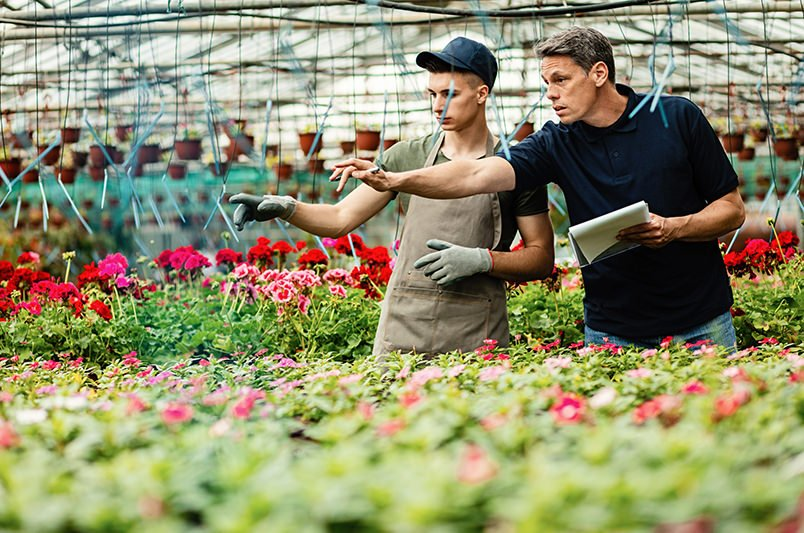 How Horticulture Businesses Can Lay the Groundwork for E-Commerce