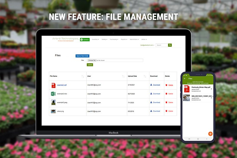 New Feature: File Management